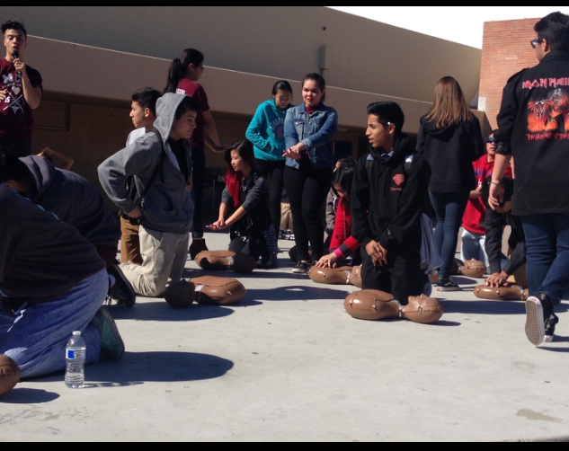 Medical Careers Academy spirit week raises heart health awareness