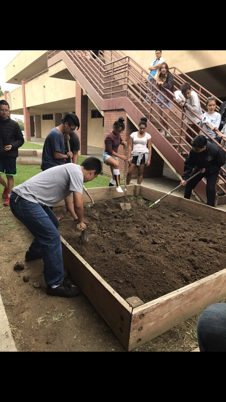 APES digging project tests item biodegradability
