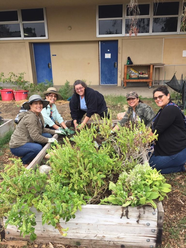 BTA Garden inspires local school