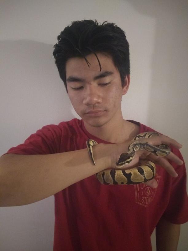 Duong sheds light on having pet snake